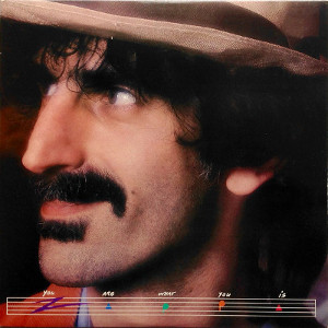 You Are What You Is frank zappa